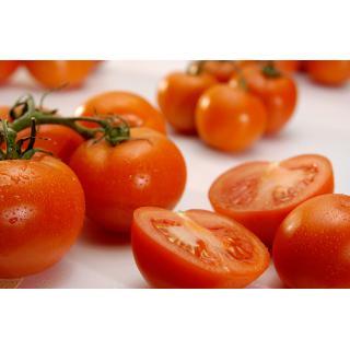 Tomaten, eigen