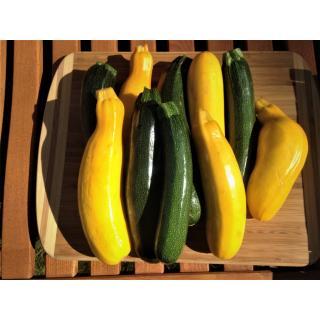 Zucchini, eigen