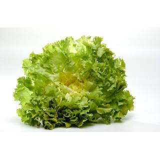 Salat, Endivie