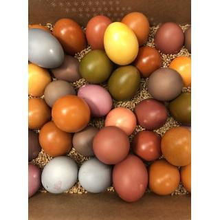 Eier, gefärbt