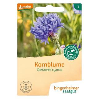 Kornblume - blau