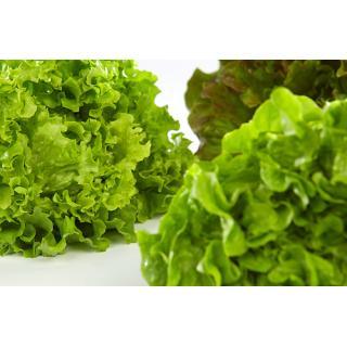 Salat eigen